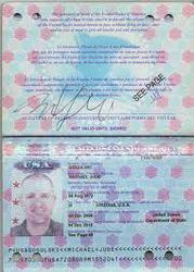 visa, passport, drivers license, id card, certificate, Eu citizenship