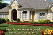 Property maintenance Guelph